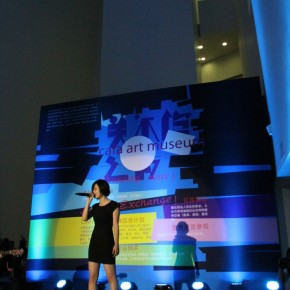 Night at the Art Museum, CAFAM 2011 15 Live Show