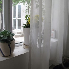 Yang Maoyuan's Studio10