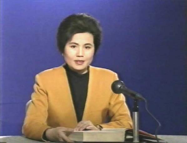 Zhang Peili's Work, 1991