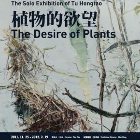 01 Poster of Tu Hongtao's The Desire of Plants
