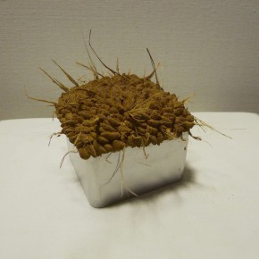 03 Yan Bing-Gift; soil and tin, 11x11x9cm