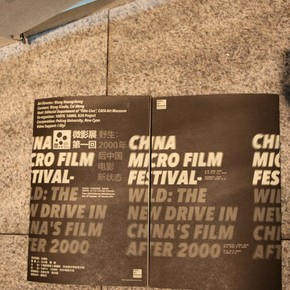 China Micro Film Festival•Wild:New Drive in China's Films After 2000