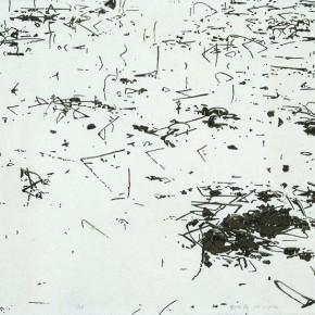 02 Liu Liping-Relfections of Lotus2009; silkscreen, 144×77cm