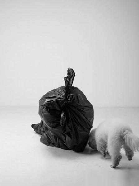Li Wei, A Bag of Trash, behavior photography; Photo-Zou Sehngwu, 170×100cm 2012