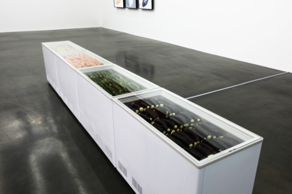 To S, freezer, cucumber, eggplant, carrot, white yam; 458x 55.5x 83cm, 2012