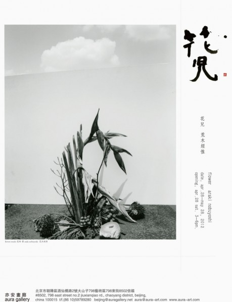 Flowers: Araki Nobuyoshi Solo Exhibition at Aura Gallery  01