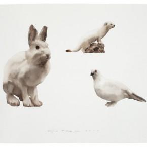 Guo Hongwei, Animal No. 2, 2011; Watercolor on paper, 22 1/2 × 30 in