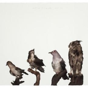 Guo Hongwei, Bird No .2, 2011; Watercolor on paper, 26 1/4 × 39 1/2 in