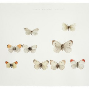 Guo Hongwei, Insect No. 2, 2011; Watercolor on paper, 26 1/4 × 39 1/2 in