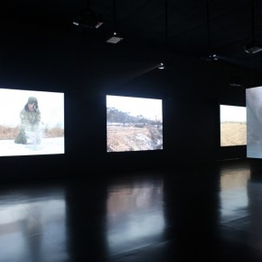 The Revival of the Snake, Installation View 02