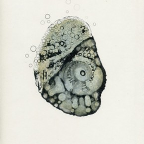 08 Facts and Illustrations of Plants on the Mars #001-005, Artist: Li Shuang, 2007; Lithograph, 30×20 cm