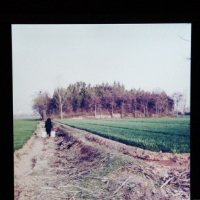 07 Exhibition View of KAN XUAN: MILLET MOUNDS; Photo by artspy.cn