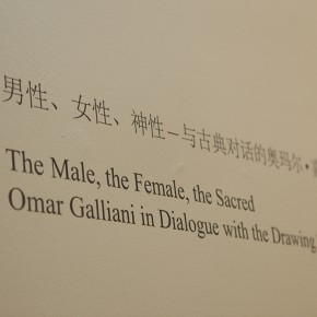 10 Exhibition View of The Male, The Female, The Sacred Omar Galliani in Dialogue with the Drawing Tradition