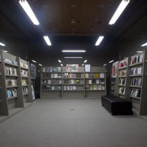 "77 Exhibition View of ""Diamond Leaves: Brilliant Artist Books from around the World"""