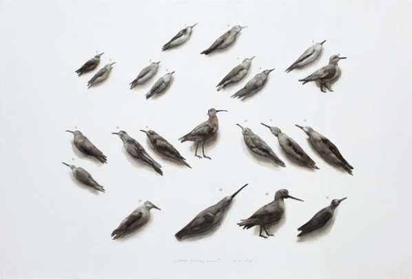 Bird No.1, 2012; watercolor on paper, 100×150cm