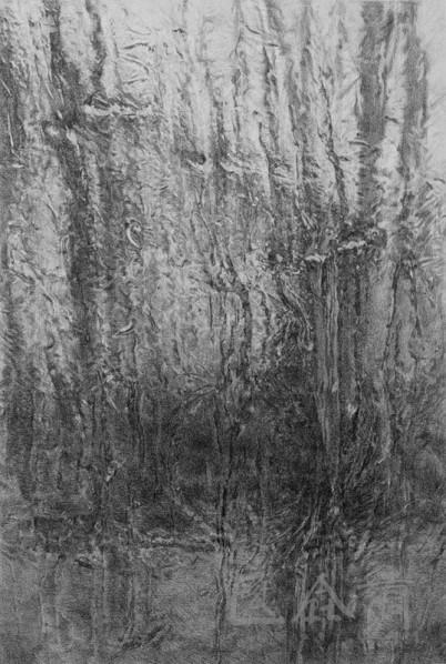 Guo Tianyi-Ice, 2012; Sketch, 100cm×80cm