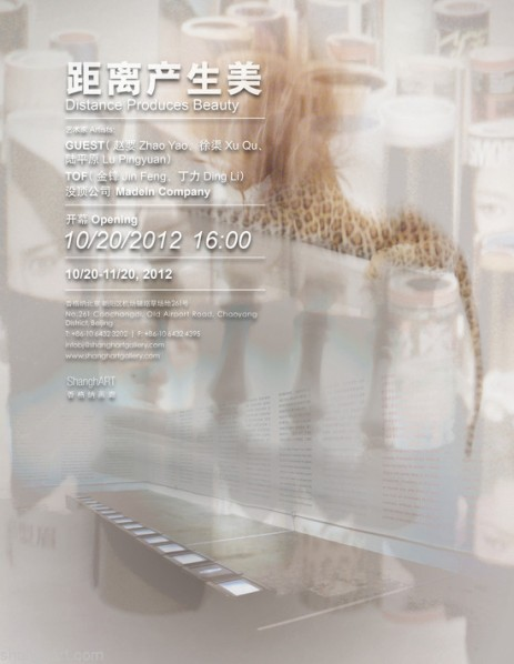 00 Poster of Distance Produces Beauty, A Display Co-curated and Created by GUEST, TOF and MadeIn Company