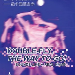 """00 Poster of """"Double Fly, The Way to Go! - Sounds like a Real Name"""""""