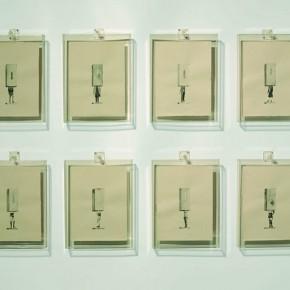 12 Wang Yi, Collections
