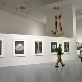 10 Exhibition View of Strayed Representation
