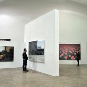 20 Exhibition View of Strayed Representation