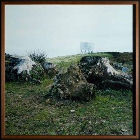 "Yto Barrada Three Euycalyptus Stumps Ziaten Tangier 2007 C Print 80x80cm Photo by Anders Sune Berg ©Faurschou Foundation 290x290 - Faurschou Foundation unveils its group exhibition ""Every Day Matters"" in Copenhagen"