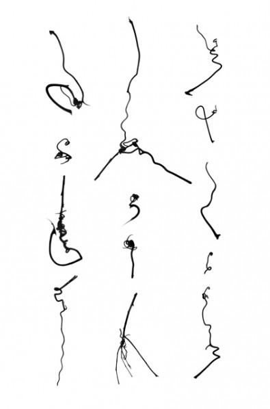 Cui Fei, Tracing IX I_i, 2012; Gelatin silver photogram, 24x16in