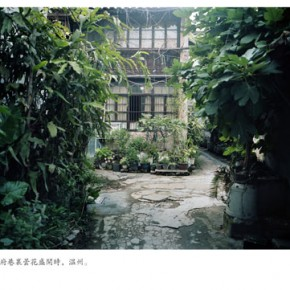 Yu Xiqis Work 290x290 - Essential Impressions: the 2013 Three Shadows Photography Award Exhibition opening April 13