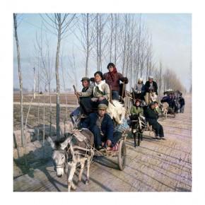 43 Weng Naiqiang's Work
