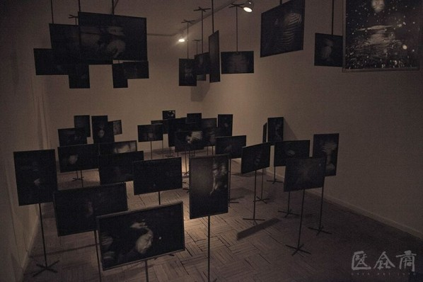 "View of Fan Xi's works ""Parallel"", photos, 2013"