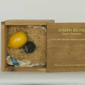 "Joseph Beuys ""Carpri Battery"" light bulb with jack in wooden box 1985 290x290 - LaoZhu Gave a Lecture Entitled ""Reflection by Beuys"" at CAFAM"