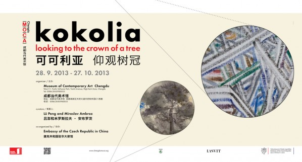 Poster-of-kokolia-looking-to-the-crown-of-a-tree