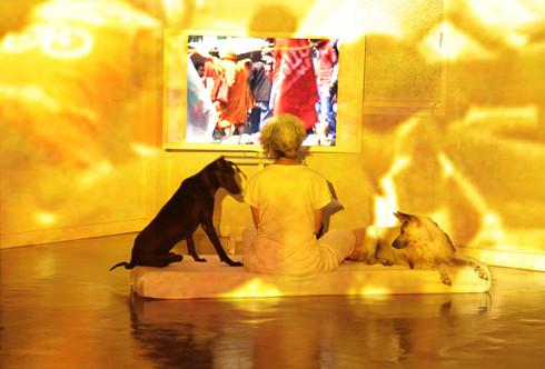 The Treachery of the Moon, 2012. Color video, with sound, 12 min., 37 sec., edition 1/7. Solomon R. Guggenheim Museum, New York, Guggenheim UBS MAP Purchase Fund, 2012, 2012.158. © Araya Rasdjarmrearnsook