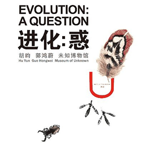 "Yuan Space presents ""Evolution: A Question"" featuring works by Hu Yun, Guo Hongwei and Museum of Unknown"