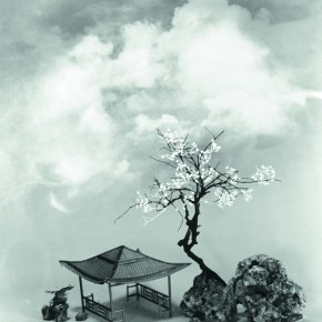 """Lang Ching shan """"Handmade Flowers and Colored Clouds"""" 61 x 51.3 cm 1975 290x290 - """"Distant Melody from Quiet Mountains – Special Exhibition of Lang Ching-shan Photography Art"""" Debut at National Art Museum of China"""