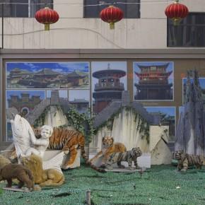 Wang Chuan Complex Stew 60x40cm 290x290 - Wang Chuan: Colorful Solo Exhibit at Pékin Fine Arts Beijing