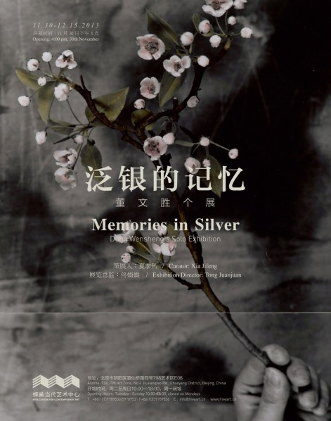 Poster-of-Memories-in-Silver