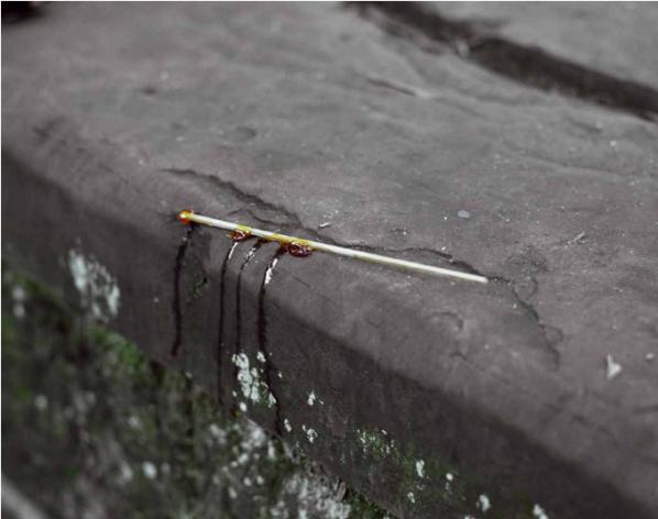 """Shen Wei, """"Sugar"""", Chongqing, 2009, c-print, 40.6x50.8cm"""