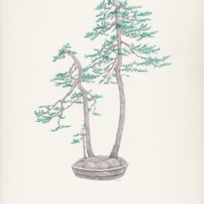 Chang Yuchen Bonsai 4 2013 pencil on paper 34.5 x 26.9 cm 290x290 - Chang Yuchen: Snake and Others Exhibiting at Fou Gallery, New York