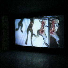 "Lu Yang ""Resurrection Frog Zombie Underwater Ballet"" 290x290 - The OCT Contemporary Art Terminal Shanghai Showcases ""Degeneration"""