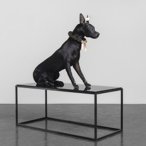"Yang Jing ""Black Wolf and Anonymous"" stuffed animals dog and bird 244 x 122 cm 2014 290x290 - Group Exhibition ""N12 No. 5"" presents works of young artists at the Beijing Commune"