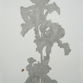 """05 Lai Jinna """"Iris"""" color pencil on paper 77 x 58 cm 2012 290x290 - Solo Show by Lai Jinna """"A Full Void"""" Opening in Beijing"""