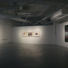 "07 Installation view of ""Empty Shadow"" the Solo Exhibition by Zhang Xiaotao 290x290 - Empty Shadow – the Recent Largest Solo Show by Zhang Xiaotao Inaugurated in Suzhou"