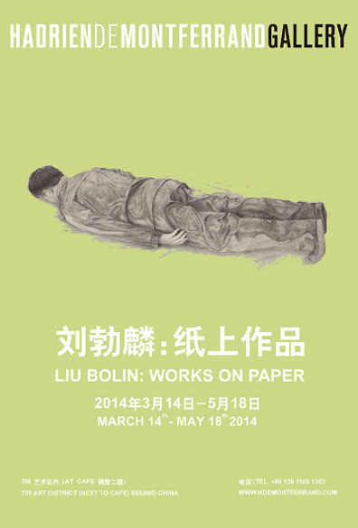 Poster of Liu Bolin Works on Paper