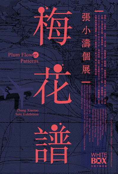 Zhang Xiaotao's Solo Exhibition Plum Flower Patterns
