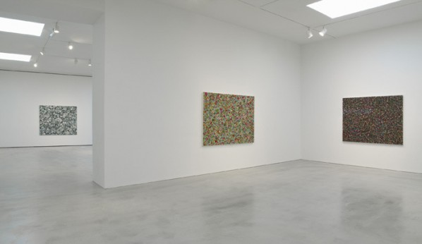 Installation View of Spring Poppy Fields 01