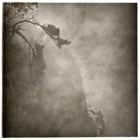 "Lu Yanpeng A Wry Tree 290x290 - Photography of Lu Yanpeng to be featured in ""Sense of Presence"" at See+ Gallery"