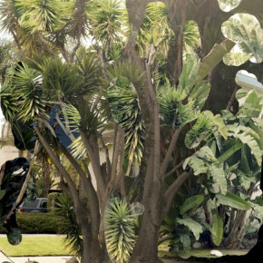 """Lucas Blalock tree on keystone 290x290 - Guangdong Times Museum presents """"Landscape: the Virtual, the Actual, the Possible?"""""""