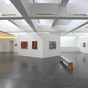 07 View of the exhibition1 290x290 - Challenge the Tradition — 20th Century Western Classical and Chinese Contemporary Photography