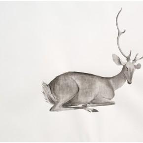 "14 Tang Hui ""Deer 2014 3"" water soluble pencils on paper 109 x 79 cm 2014 290x290 - Tang Hui"